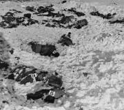 Corps de Prisionniers massacrés à Malmedy