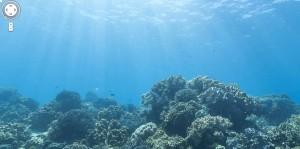 mer de corails avec google street view
